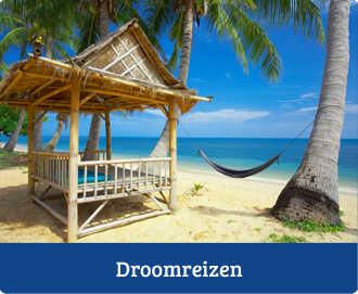Droomreizen-travlin-the-world